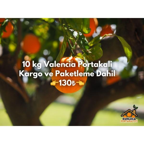 10 KG VALENCİA PORTAKAL