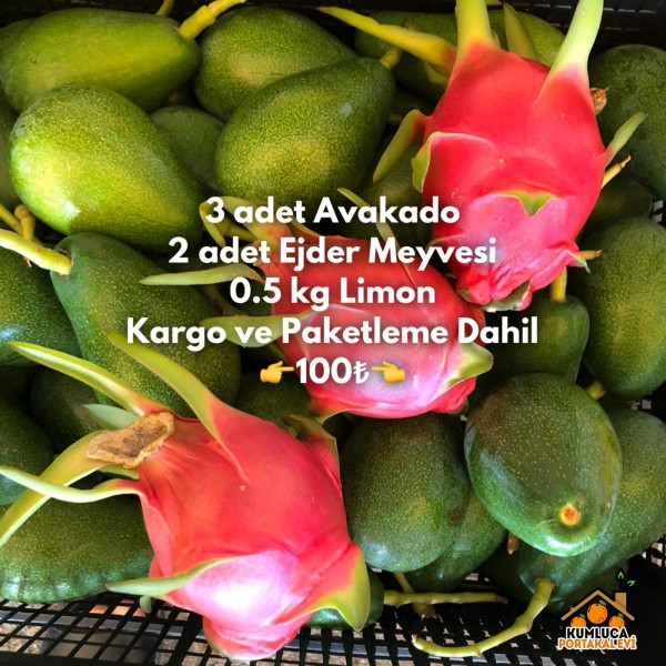 MEYVE PAKETİM 009