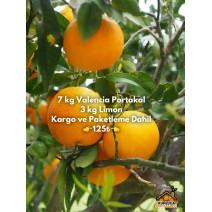 7 KG VALENCİA PORTAKAL-- 3 KG LİMON